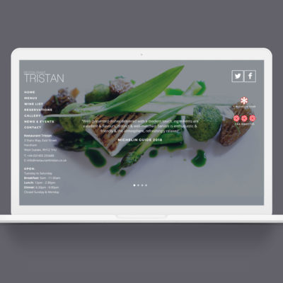 - Tristan Website Mockup 400x400 - Home page